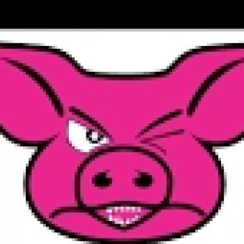 Mr Pig